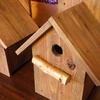 小鳥の巣箱を作ってみた