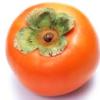 庭で採れた柿の種ではなく実ごとまた庭に植えたら柿の木が生えた話