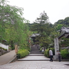 1300年を深呼吸しよう!今が満開!長谷寺の牡丹
