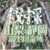 富士川流域で無料で伐採をしてくれる方を募集しています 山梨県・静岡県