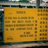 【完全版】ベランダに巨大ゴキブリが出た!?中国・香港生活で培った対処法