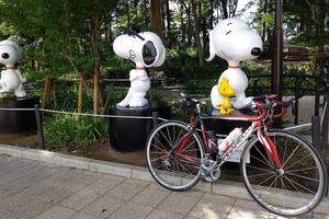 【行ったつもりシリーズ】東京本土最南端で引っ越したスヌーピーと会う