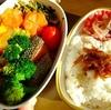 【雑記】お弁当生活、復活。