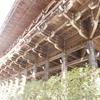 【書写山円教寺】舗装されてない山道が昔を感じさせる!数々の古い建物で映画の撮影も行われた書写山円教寺とは?
