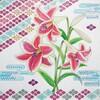 【季節の塗り絵】百合の咲く夏