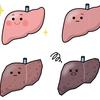 コレステロール(AST,ALT)脂質異常症