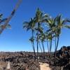 2019年 ハワイ島 8−9日目