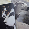 世界で一番美しい犬の図鑑と世界の美しい犬101