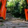 和歌山旅行へ行ってきた 歩き疲れて死亡編(神倉神社~飛瀧神社(那智大滝)~熊野那智大社~道成寺)