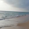 【今週のお題】沖縄旅行でグルメを堪能   絶品料理のご紹介