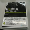 書評:Node.jsプログラミンガイド (Node本を書くのはホント大変なのよ)