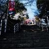 新倉山登れ...😅❸