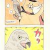 ネコノヒー「手品鳥2」