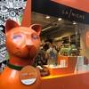 【パリ4日目】パリの流行発信地マレ地区でおすすめのペットショップ『La Niche』と雑貨屋さん『La Petite Epicerie』