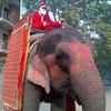 Merry Krishnamass !?