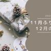 11月の振り返り・11月の目標【2020】