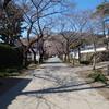 【福岡】秋月花見ツーリング2017【毎年恒例?】