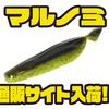 【レイサム】人気の変貌自在マルチシェイプワーム「マルノミ」通販サイト入荷!
