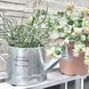 【100均】ダイソーのブリキ調ジョウロが鉢植えや鉢植えカバーに可愛い!