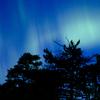 オーロラを見ながら日本の冬を感じる