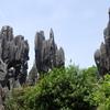 中国の石林!予想外の素晴らしさに写真を撮りすぎた!