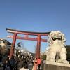 新春の鶴岡八幡宮、ちょっと不思議な鎌倉のバス