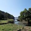 小網代の森と横須賀の酒場を巡りました