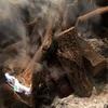 焚き火で焼きあげる巨大Tボーンステーキと、落下肉救出作戦
