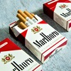 DMM英会話Daily News予習復習メモ:Philip Morris CEO Says Cigarette Sales May End in 10-15 Years