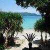 【子連れ旅行】毎年沖縄に行ってた私が奄美大島に浮気したらマジになってしまった話