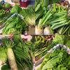 家族のために健康を意識してfarmrootsの無農薬野菜をお取り寄せしてみた