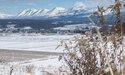 初冬の美瑛の風景を楽しむ
