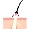 デリケートゾーン体験話:メンズVIO!!初回2000円で俺はブンブン丸になったwwwwww
