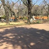 笹谷純先生#107井の頭公園にて