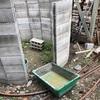 庭に尖塔トイレを作る 〜 地上第八層、殺人ホーネットとの死闘の巻