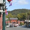 花見には無理がある京都でした。その2。