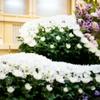 1分でわかる!会葬御礼(返礼品)、会葬礼状で気をつけるべきマナー・作法