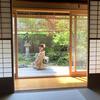 ☆1日1組限定の京町家で自分たちだけのプライベート空間を楽しむ!密が避けられる