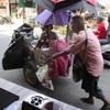 (パタヤ) 最近、たまに見かける手押しゴミ車