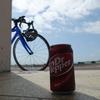自転車でのデジカメの持ち歩き方(いつもの江戸サイで試してみた。)