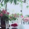 バラをお部屋で楽しむ