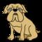 《2020年最新版》人気の犬ランキング!あなたのかわいいワンちゃんは何位かな?
