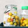 手間をかけずに手作り梅酒を楽しみたい!簡単キット「果実酒の季節」なら仕込み最小限