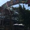 子供たちと渋川動物園で亀と遊ぶ!渋川動物園の紹介レビュー