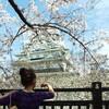 大阪城でお花見、中華でバースデーパーティー