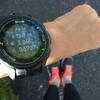10km走で自信をつけたのか、やっと1時間ずっと走っていられるようになった