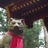【妖怪探訪】狼信仰と恐怖の病、三峯・オオカミ話