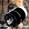 【OBS・RDA】Cheetah II RDA をもらいました