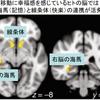 記憶と快楽の関係(脳を喜ばせると幸せになれるかも)
