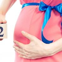 妊娠2ヶ月 妊娠の予感が実感へ!